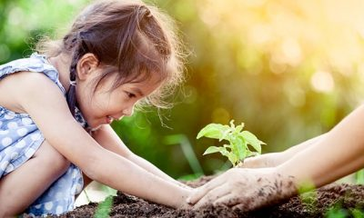 Nature exposure in childhood shows reduced rate of depression in adults.