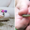 26 Adorable Snakes That Will Make You Love Them Instead Of Fear