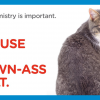 Animal Adoption Center Inspires People To Adopt Adult Pets With 16 Funny Posters.