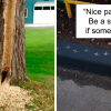 35 Hilarious Times People Have To Shame These Birds For The Jerk They Are