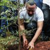 Ethiopia Breaks World Record For Planting 350 Million Trees In 12 Hours.